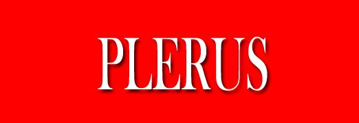 Revista PLERUS